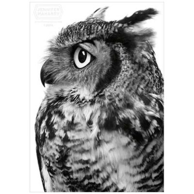 great-horned-owl-product-page