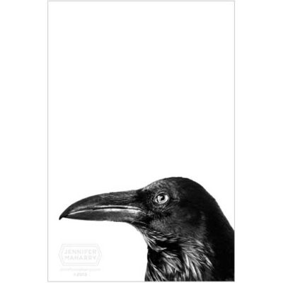 raven-face-product-page