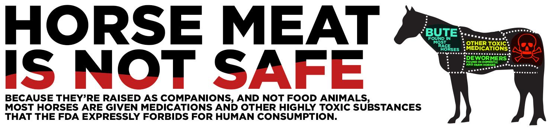 horsemeat toxic 1