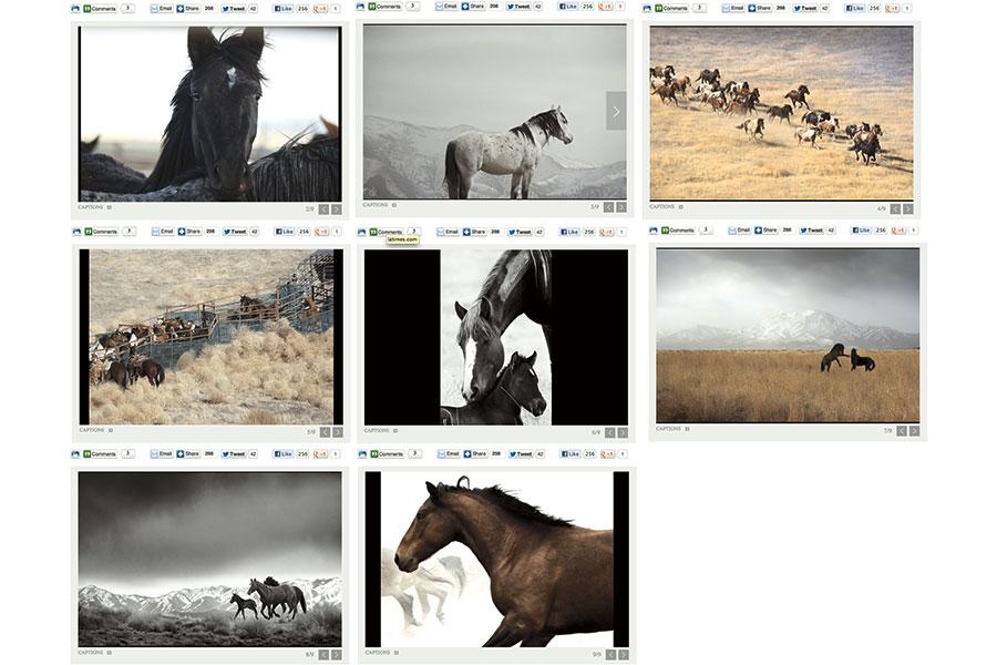 Gallery_LA_Times600x900px