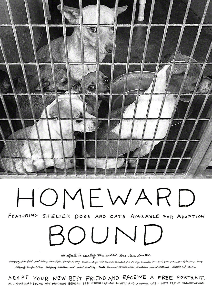 LAYERS-HOMEWARD-BOUND-IMAGES-WITH-LETTERING-edited-down2.psd_0000_Layer-47