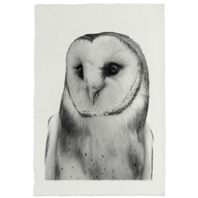 BARN OWL HANDMADE PAPER 500x500